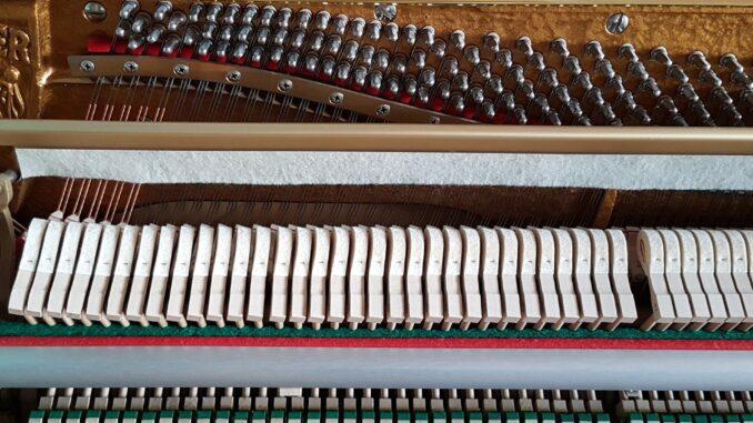 Arbeit vom Klavier- und Cembalobauer